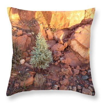 Red Rock Christmas Throw Pillow