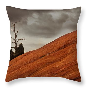 Throw Pillow featuring the photograph Red Rock by Dana DiPasquale