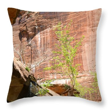 Red Rock With Waterfall Throw Pillow