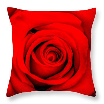 Red Rose 1 Throw Pillow