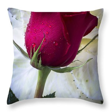 Red Rose And Kale Flower Throw Pillow
