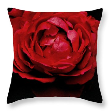 Throw Pillow featuring the photograph Red Rose by Charlotte Schafer