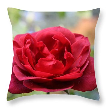 Red Rose Throw Pillow by Erica Hanel
