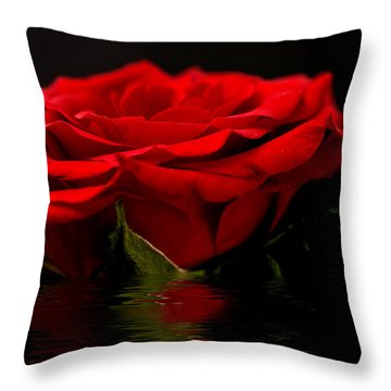 Red Rose Flood Throw Pillow by Steve Purnell