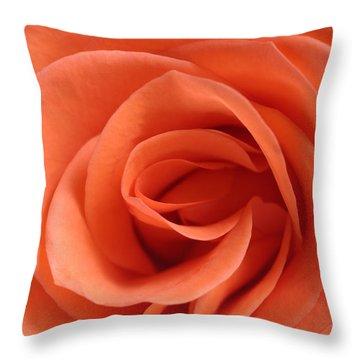 Red Rose Floribunda Closeup Throw Pillow