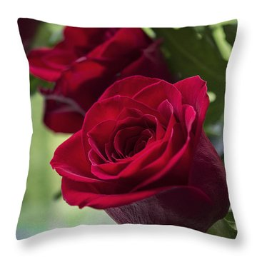 Red Rose Throw Pillow by Ian Mitchell