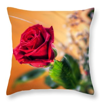 Red Rose Of Love Throw Pillow