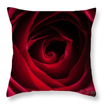 Red Rose Square Throw Pillow