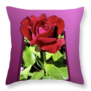 Red Rose Throw Pillow by Thomas Woolworth