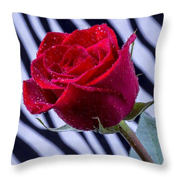 Red Rose With Stripes Throw Pillow