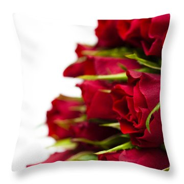 Red Roses Throw Pillow by Anne Gilbert