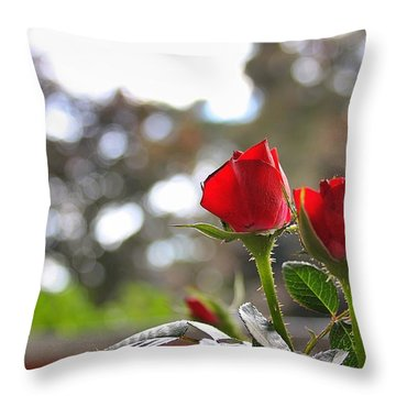 Red Roses Throw Pillow by Daniel Precht