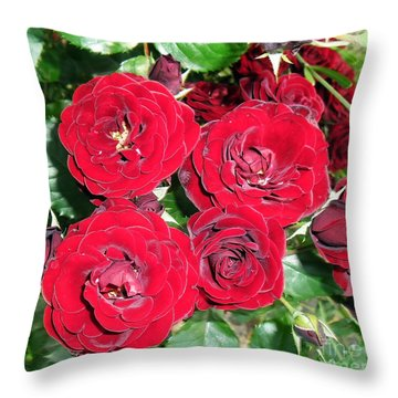 Throw Pillow featuring the photograph Red Roses by Vesna Martinjak