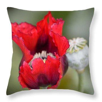 Red Sensation Throw Pillow by Sonali Gangane