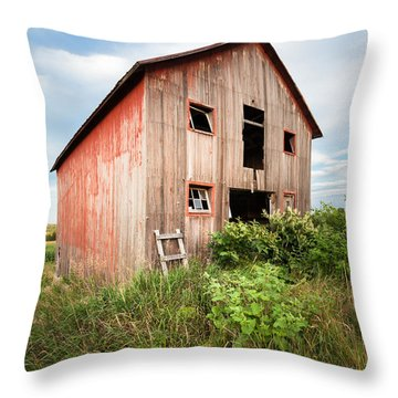 Throw Pillow featuring the photograph Red Shack On Tucker Rd - Vertical Composition by Gary Heller