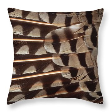 Red-shafted Flicker Feathers Throw Pillow