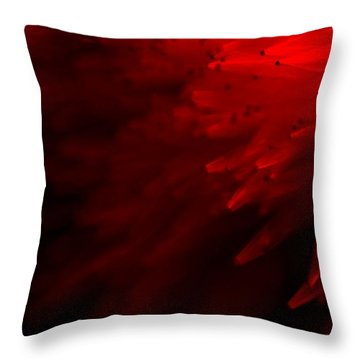 Throw Pillow featuring the photograph Red Skies by Dazzle Zazz