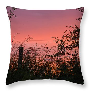 Red Sky At Night Throw Pillow