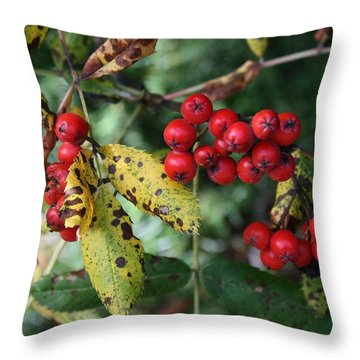Red Summer Berries - Whistler Throw Pillow