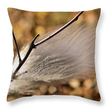 Red Tail Hawk Feather Throw Pillow by Kristin Elmquist