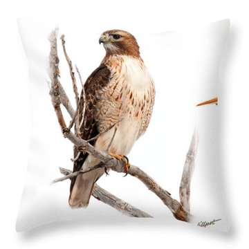 Red Tail Hawk Series Throw Pillow