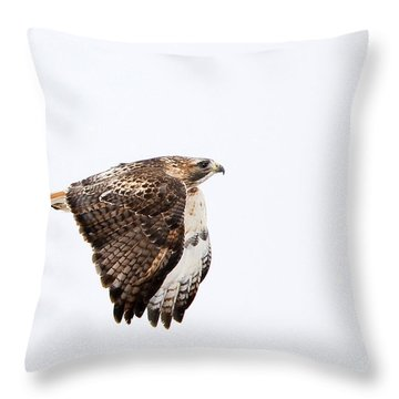 Red Tail In Flight Throw Pillow