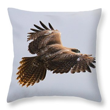 Red Tail Take Off Throw Pillow by Paul Marto
