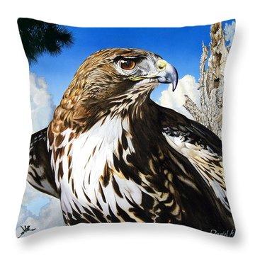 Da141 Red Tailed Hawk By Daniel Adams Throw Pillow