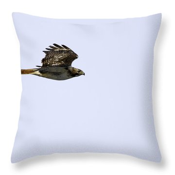 Red-tailed Hawk In Flight 1 Throw Pillow