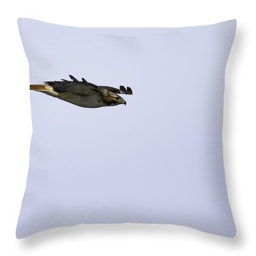 Red-tailed Hawk In Flight 3 Throw Pillow