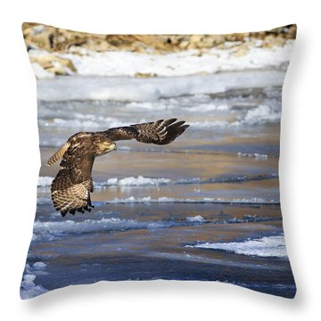 Throw Pillow featuring the photograph Red-tailed Hawk In Flight by Gary Hall