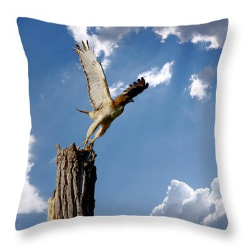 Red-tailed Hawk Perch Series 5 Throw Pillow by Roy Williams