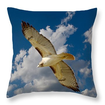 Red-tailed Hawk Soaring Series 5 Throw Pillow