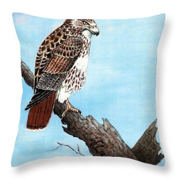 Throw Pillow featuring the painting Red Tailed Hawk by VLee Watson