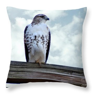 Red Tailed Hawk Waiting Throw Pillow