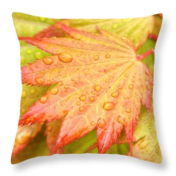 Red Tip Leaf Throw Pillow