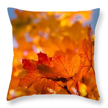 Throw Pillow featuring the photograph Red Tipped Gold by Jeff Folger