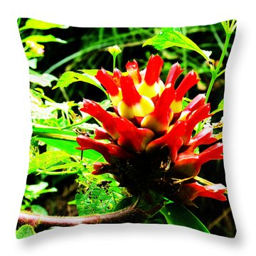 Red Torch Ginger Flower One Throw Pillow by Tina M Wenger
