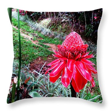 Red Torch Ginger Flower Two Throw Pillow by Tina M Wenger