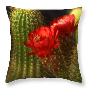 Red Torch II  Throw Pillow by Saija  Lehtonen