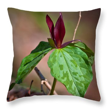 Red Trillium Throw Pillow by Melinda Fawver