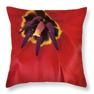 Red Tulip Detail Throw Pillow