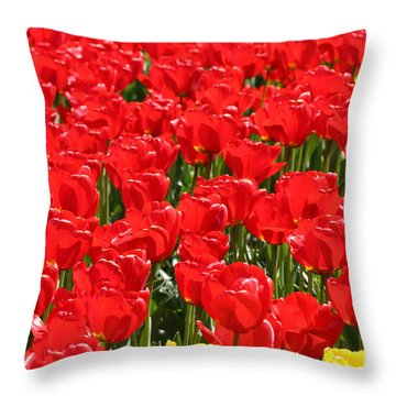 Red Tulip Field Throw Pillow by Tap On Photo