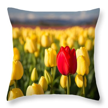 Red Tulip In A Yellow Field Throw Pillow