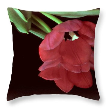 Red Tulip On Burgundy Throw Pillow