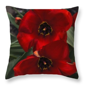 Red Tulip Pair Throw Pillow