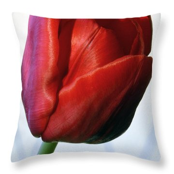Red Tulip Portrait Throw Pillow