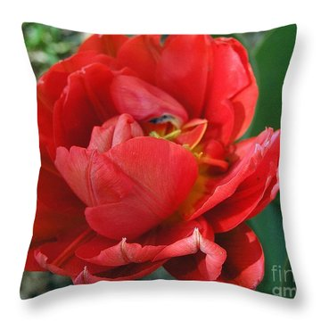 Throw Pillow featuring the photograph Red Tulip by Vesna Martinjak