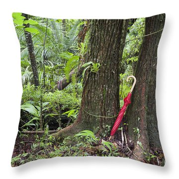 Throw Pillow featuring the photograph Red Umbrella Leaning Against Tree In Rainforest by Bryan Mullennix