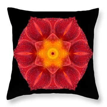 Red Wet Lily Flower Mandala Throw Pillow by David J Bookbinder